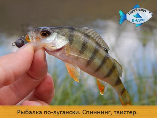 Рыбалка по-лугански. Cпиннинг, твистер.