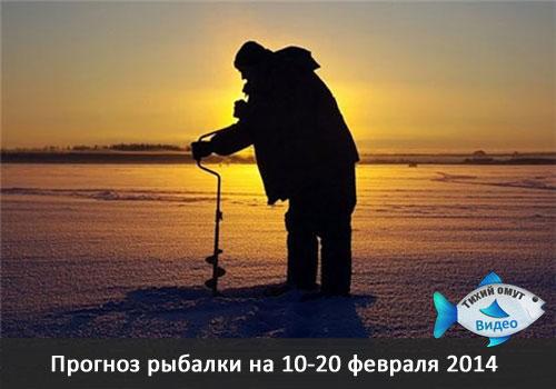 Прогноз рыбалки на 10-20 февраля 2014